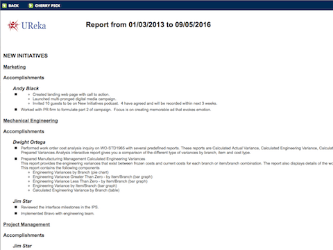 Generated Report Screenshot